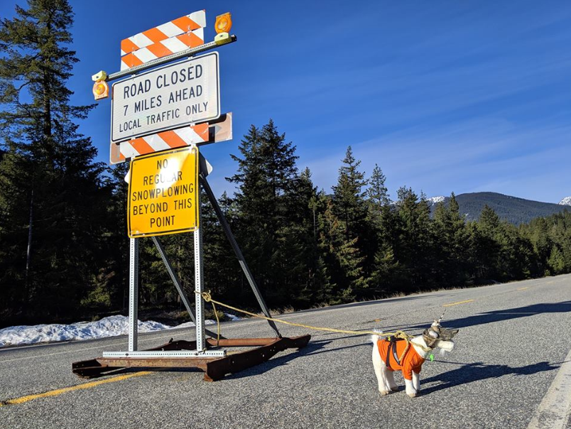 North Cascades Highway to Reopen Tomorrow.