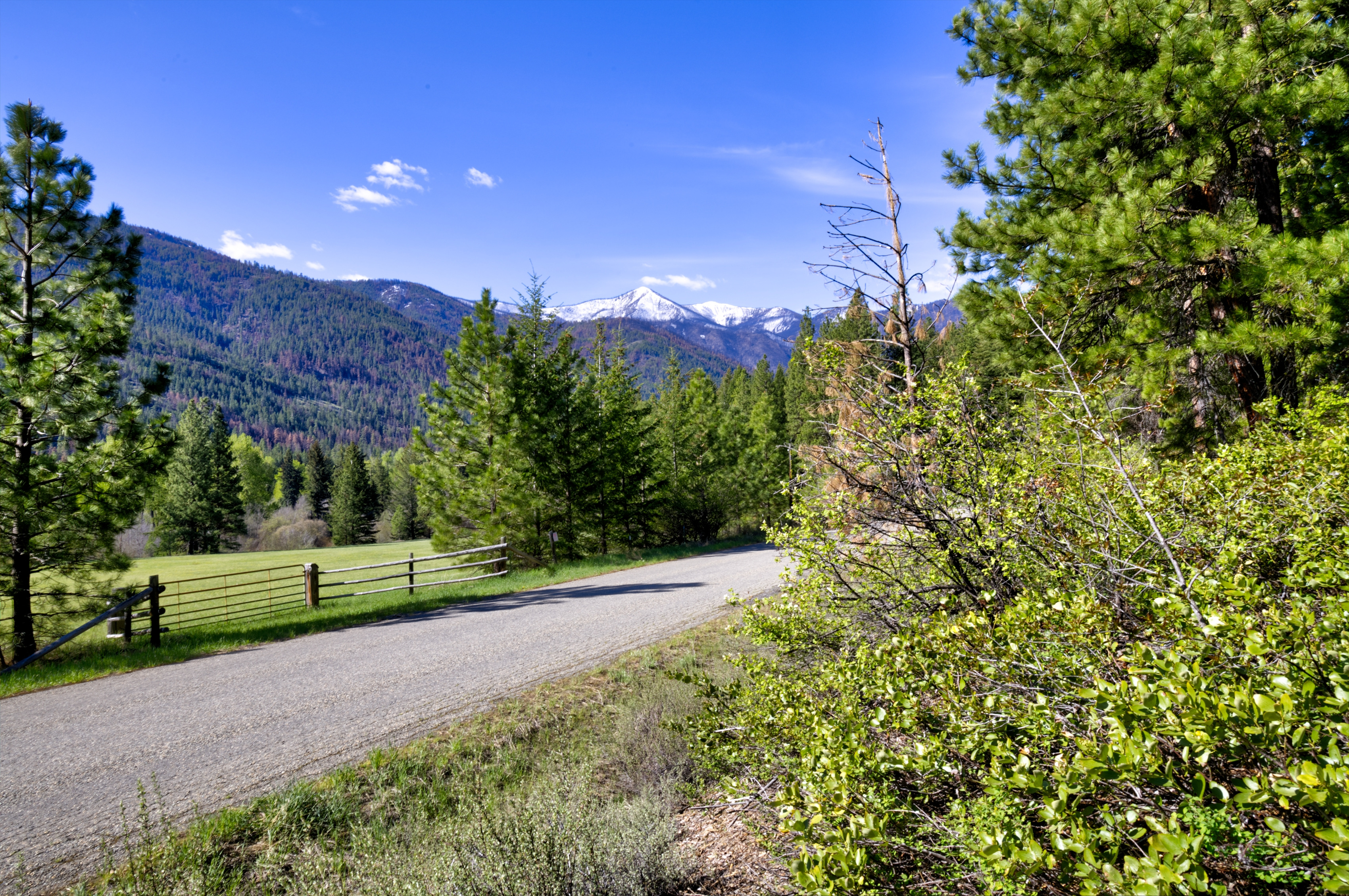 Twisp River Rd. Land for Sale